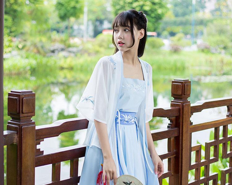 Hanfu Dress Chinese Traditional Clothing