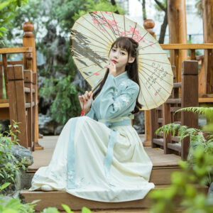 traditional ruqun hanfu dress newhanfu