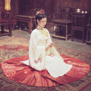 horse-face hanfu dress