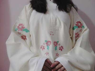aoqun hanfu dress